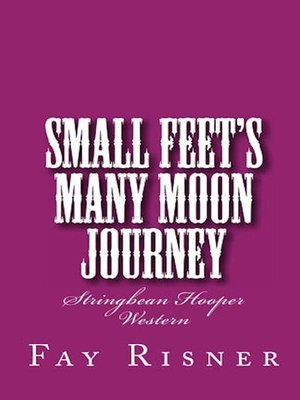 cover image of Small Feet's Many Moon Journey