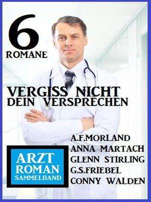 cover image of Vergiss nicht dein Versprechen