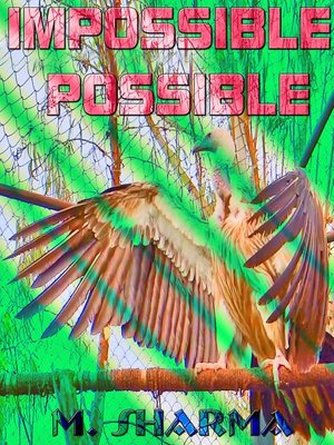 cover image of Impossible Possible