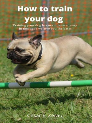 cover image of How to train your dog    Training your dog has never been so easy in this book we give you the bases