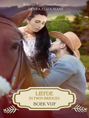 cover image of boek vijf: Liefde in Twin Bridges, #5