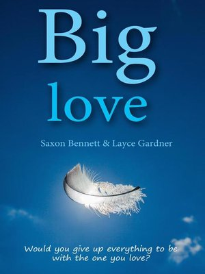 cover image of Big Love