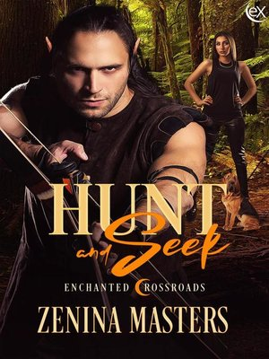 cover image of Hunt and Seek