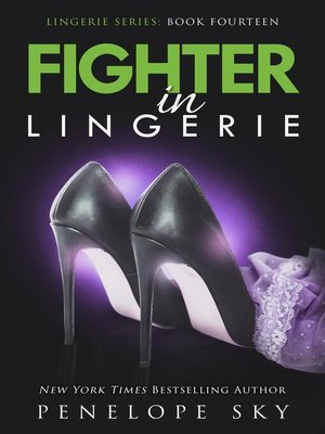 cover image of Fighter in Lingerie