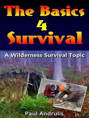 cover image of Basics 4 Survival