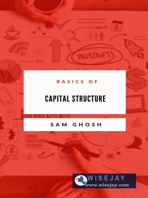 cover image of Basics of Capital Structure