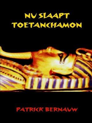 cover image of Nu slaapt Toetanchamon