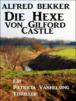 cover image of Die Hexe von Gilford Castle