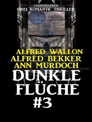 cover image of Dunkle Flüche #3