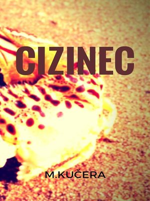 cover image of Cizinec
