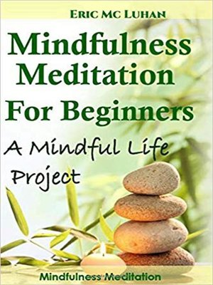 cover image of Mindful Meditation for Beginners. Mindfulness Meditation