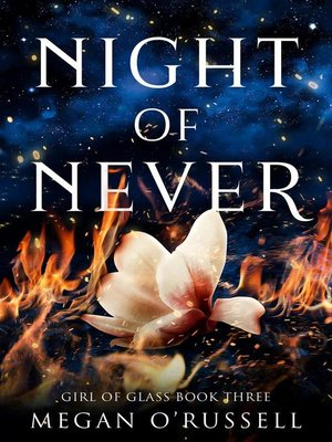 cover image of Night of Never