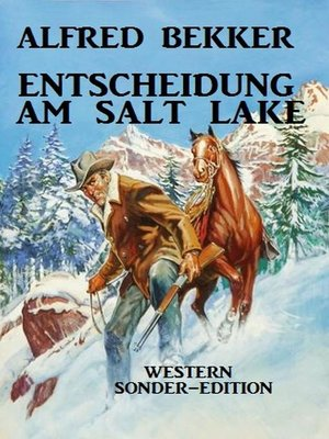 cover image of Entscheidung am Salt Lake