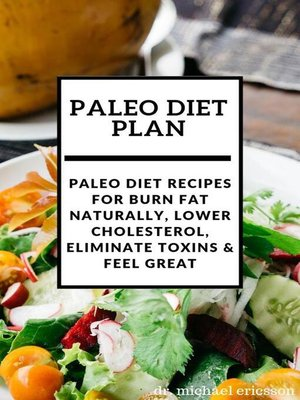 cover image of Paleo Diet Plan