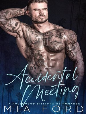 cover image of Accidental Meeting