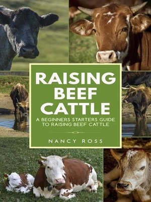 cover image of Raising Beef Cattle