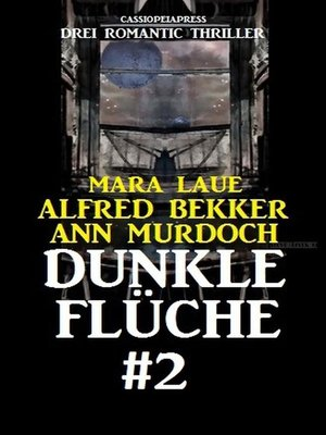 cover image of Dunkle Flüche #2