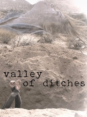 cover image of Valley of Ditches