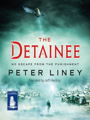 cover image of The Detainee