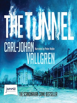 cover image of The Tunnel