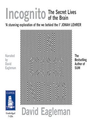 cover image of Incognito