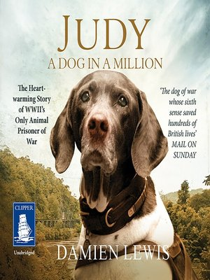 cover image of Judy--A Dog in a Million