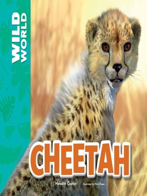 cover image of Cheetah