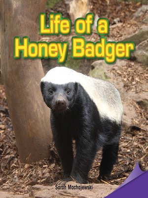 cover image of Life of a Honey Badger