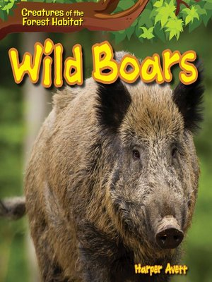 cover image of Wild Boars