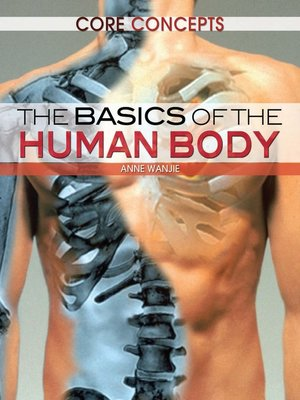 cover image of The Basics of the Human Body