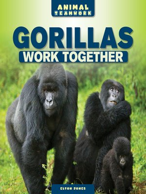 cover image of Gorillas Work Together