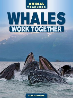 cover image of Whales Work Together