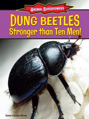 cover image of Dung Beetles: Stronger Than Ten Men!