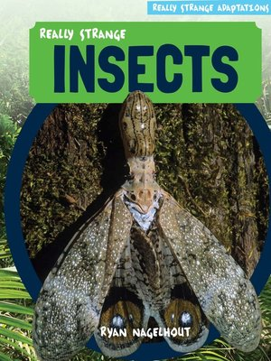 cover image of Really Strange Insects