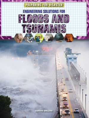 cover image of Engineering Solutions for Floods and Tsunamis