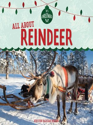 cover image of All About Reindeer