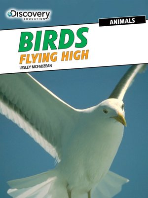cover image of Birds: Flying High