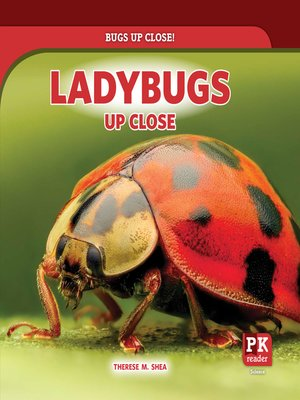 cover image of Ladybugs Up Close