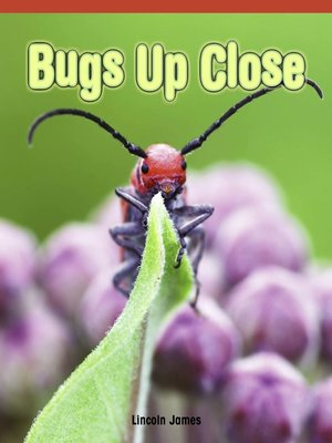 cover image of Bugs Up Close