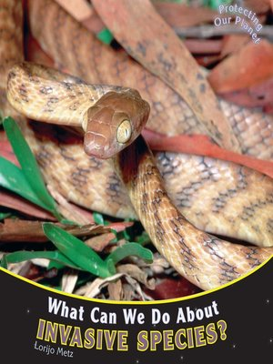 cover image of What Can We Do About Invasive Species?
