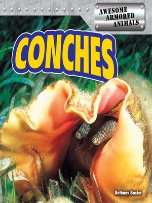 cover image of Conches