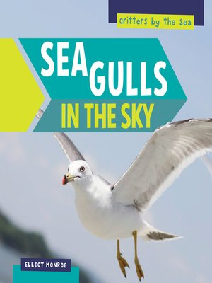 cover image of Sea Gulls in the Sky