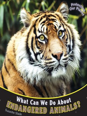 cover image of What Can We Do About Endangered Animals?