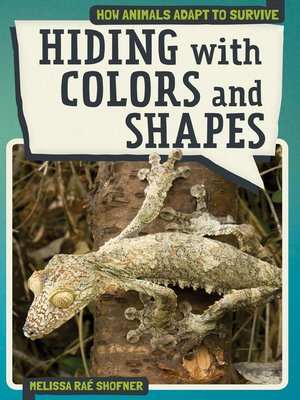 cover image of Hiding with Colors and Shapes