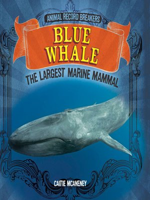 cover image of Blue Whale: The Largest Marine Mammal