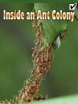 cover image of Inside an Ant Colony