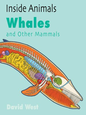 cover image of Whales and Other Mammals