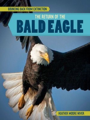 cover image of The Return of the Bald Eagle