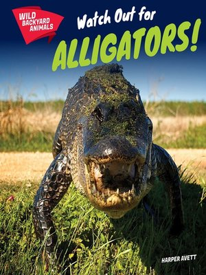 cover image of Watch Out for Alligators!