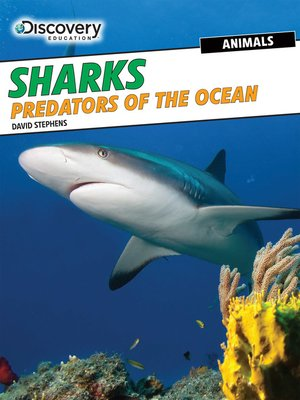 cover image of Sharks: Predators of the Ocean